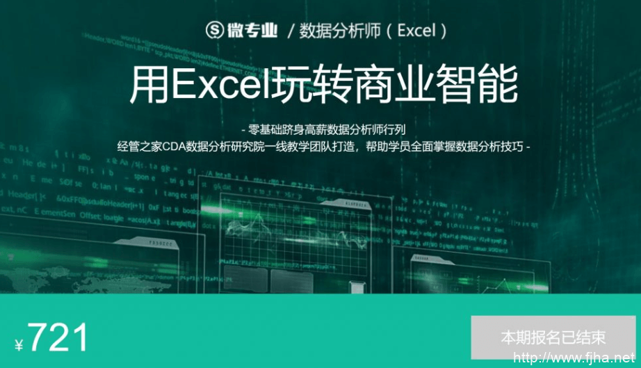 数据分析师(用Excel玩转商业智能)