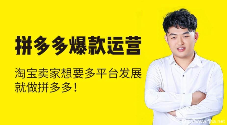 猫课2020拼多多运营【聪明卖家都在做】_百度云下载