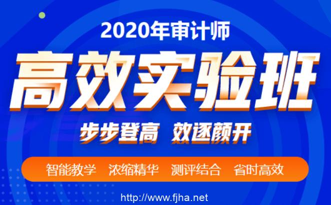 2020初·中级审计师李斌审计理论与实务、审计专业相关知识