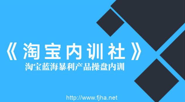 盗坤:淘宝内训社·淘宝蓝海暴利产品操盘内训