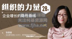 张丽俊:组织的力量28讲